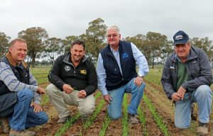 Baker Seed Co - Henty Field Day